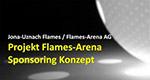 Sponsoring-Konzept Titelbild Flames-Arena